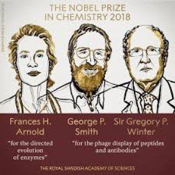 Nghiên cứu chế tạo enzyme mới giành giải Nobel Hóa học
